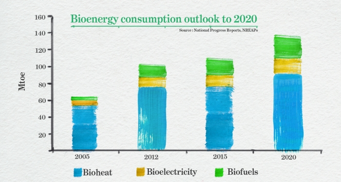 Figure 3. Bioenergy consumption outlook to 2020. Source: European Commission, 2014.