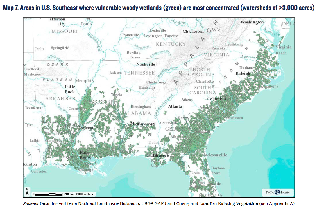 Map Southeast Us Forest Map Taken From Nrdc Report Page 11