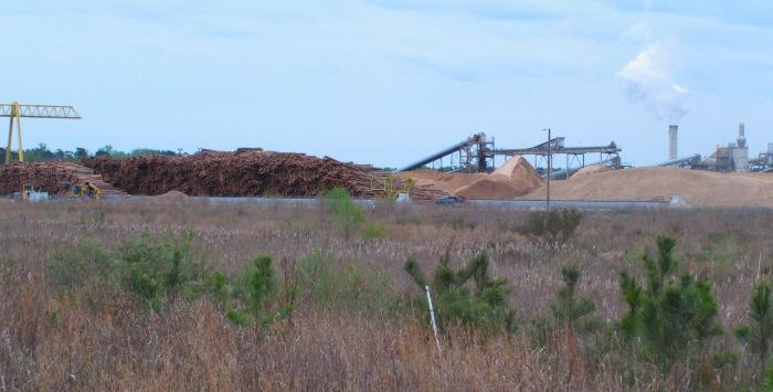 Sini US trip_Enviva Southampton VA Pellet Mill 010416 (c) Sini Eräjää_small